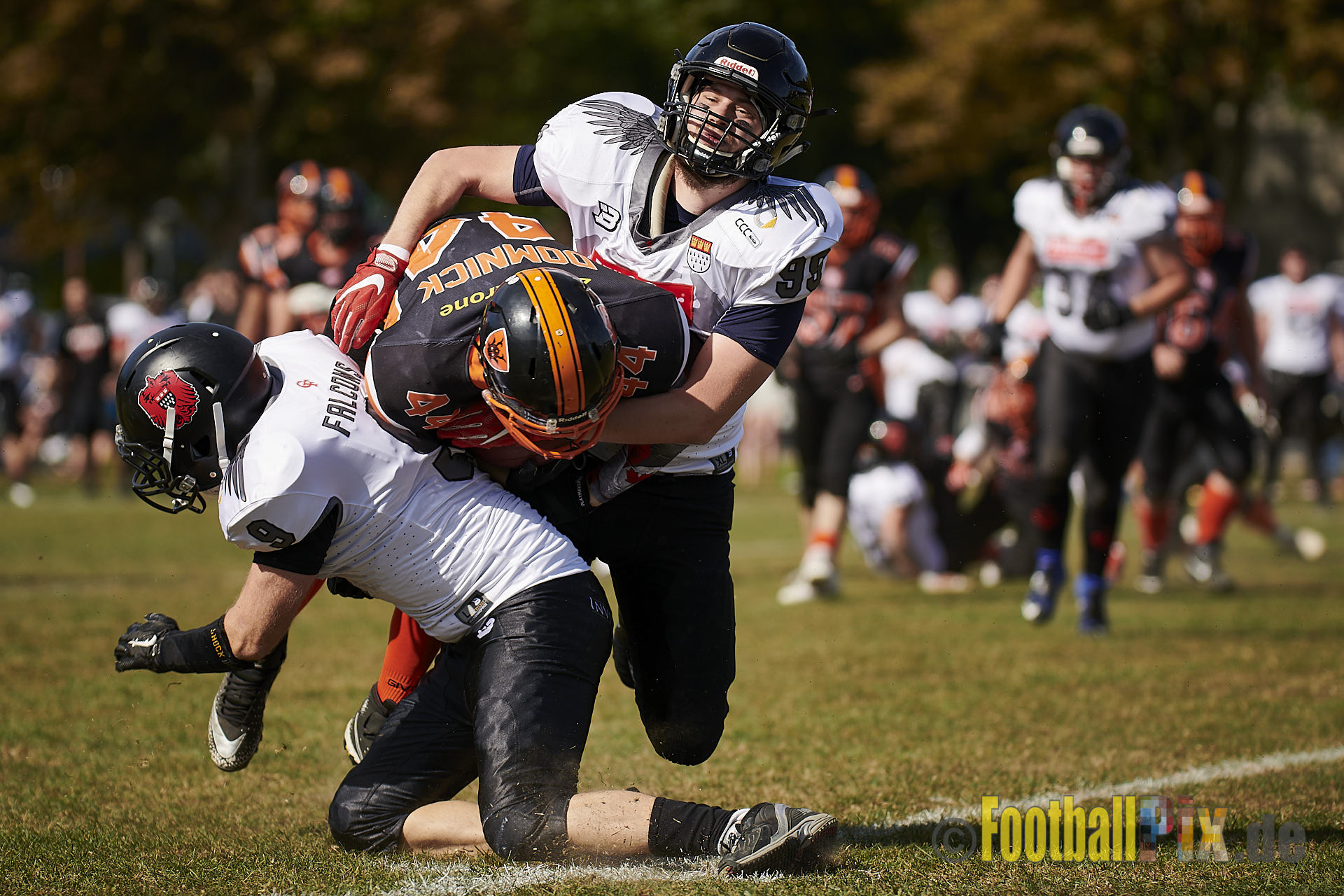 15.09.2019 LL NRW: Cologne Falcons Prospects vs. Cologne Ronin (28:2)
